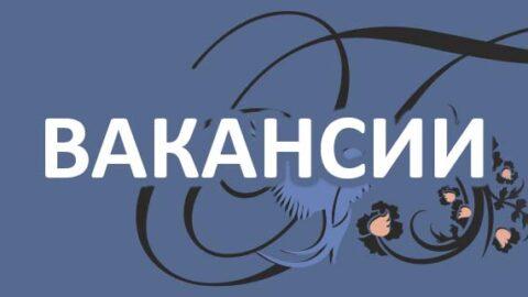 Вакансии сети салонов Галерея обоев Бьютика в Калининграде и области